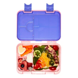 Bento Box Lunch Boxes for Kids - AOHEA