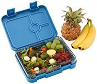 Adventure Kids Bento Lunch Box Wholesale